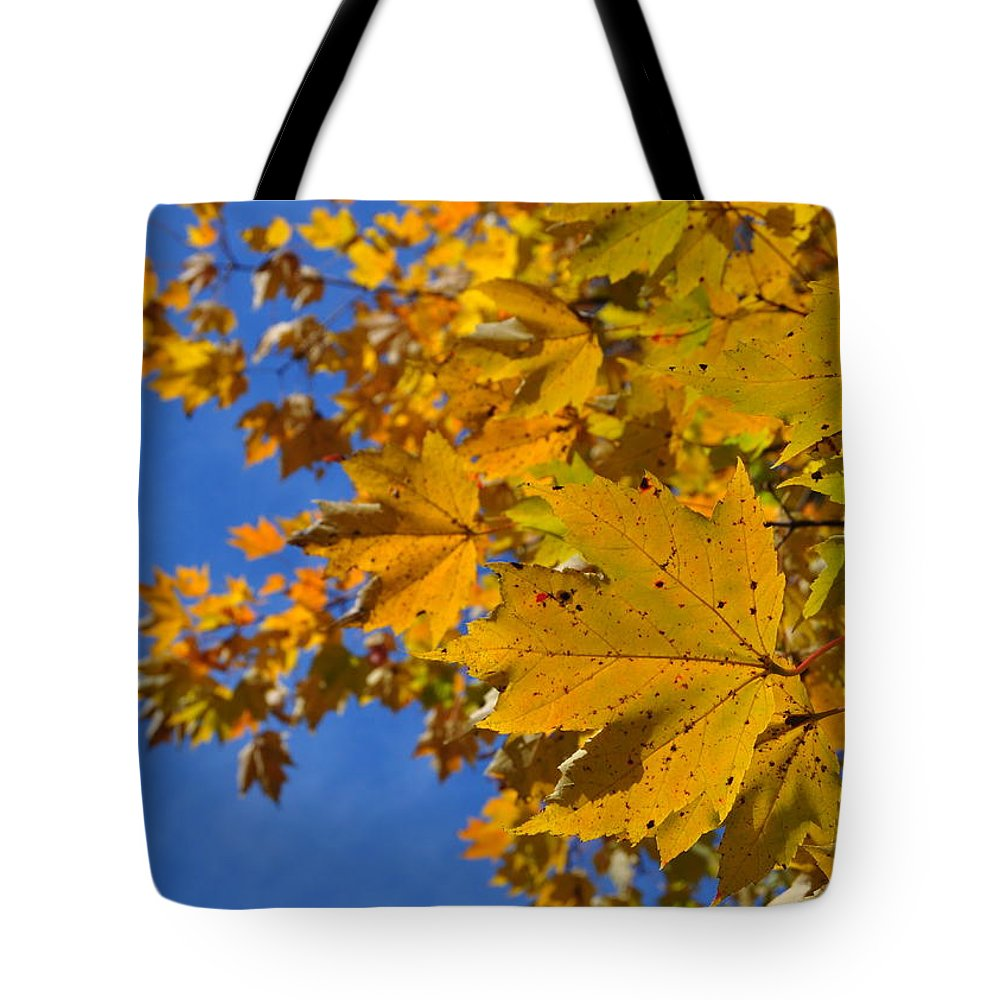Leaf Tote Bag featuring the photograph Autumn Sky by JAMART Photography