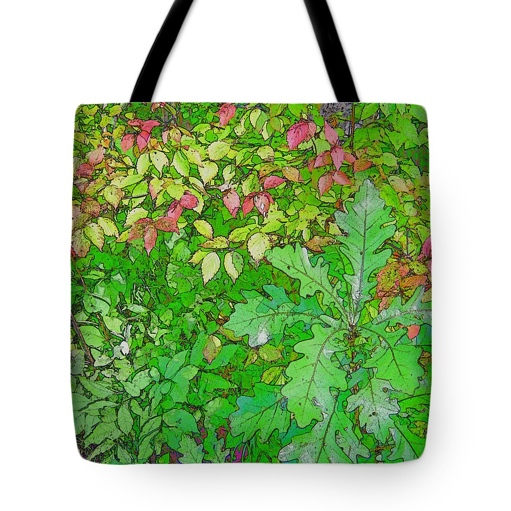 Leaves Tote Bag featuring the photograph Autumn Splender by Joanne Smoley