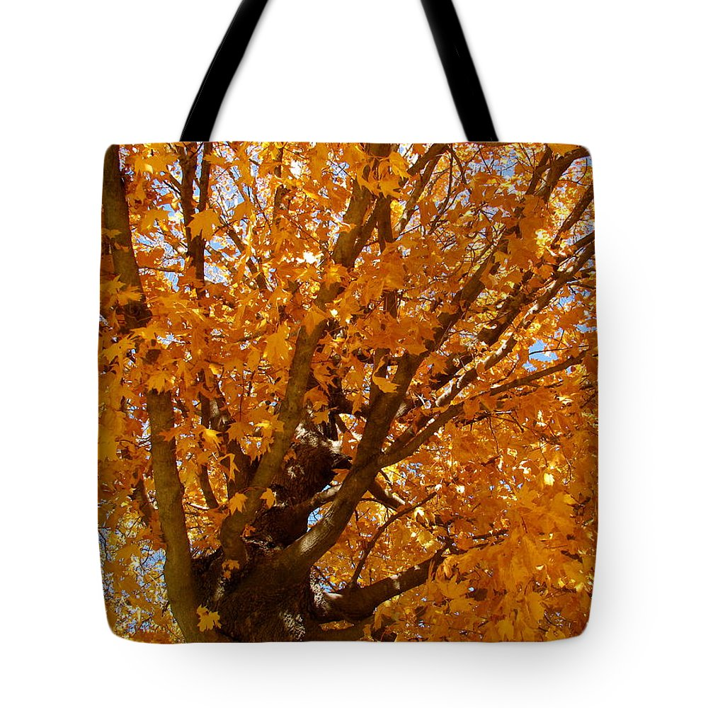 Autumn Tote Bag featuring the photograph Autumn Tree by Sherri Williams
