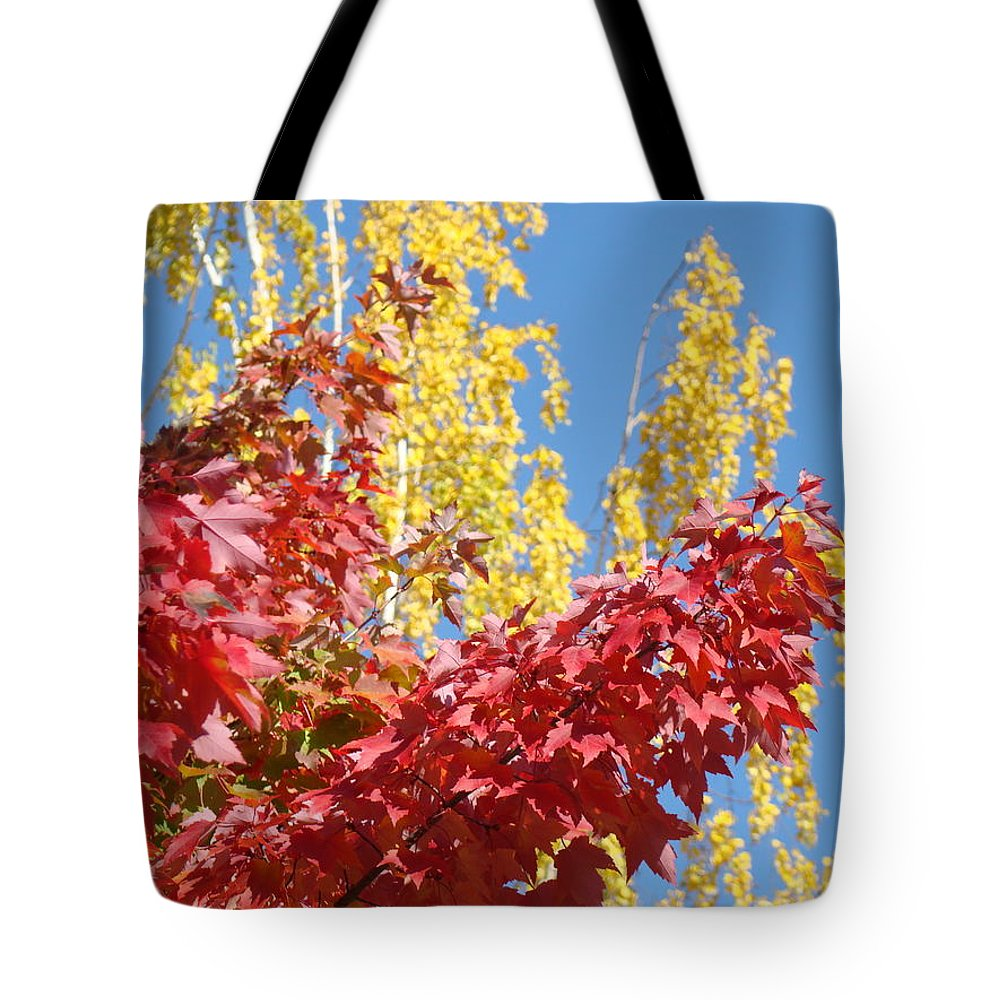 Autumn Tote Bag featuring the photograph Autumn Trees Red Yellow Fall Tree Blue Sky Landsape by Baslee Troutman