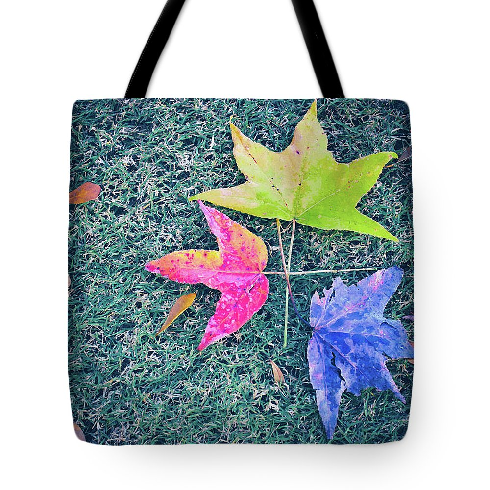 Autumn Tote Bag featuring the photograph Autumn Trio by Iryna Goodall