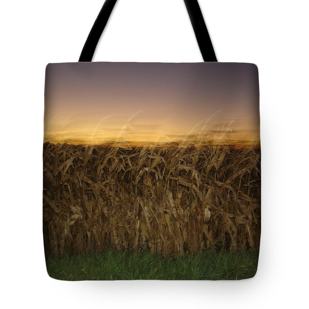 Autumn Tote Bag featuring the photograph Autumn Twilight by Brittany Horton