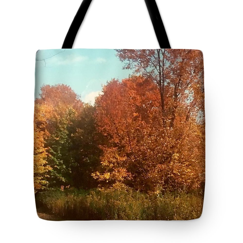 Tote Bag featuring the photograph Autumn Woods by Jo Ann Farabee