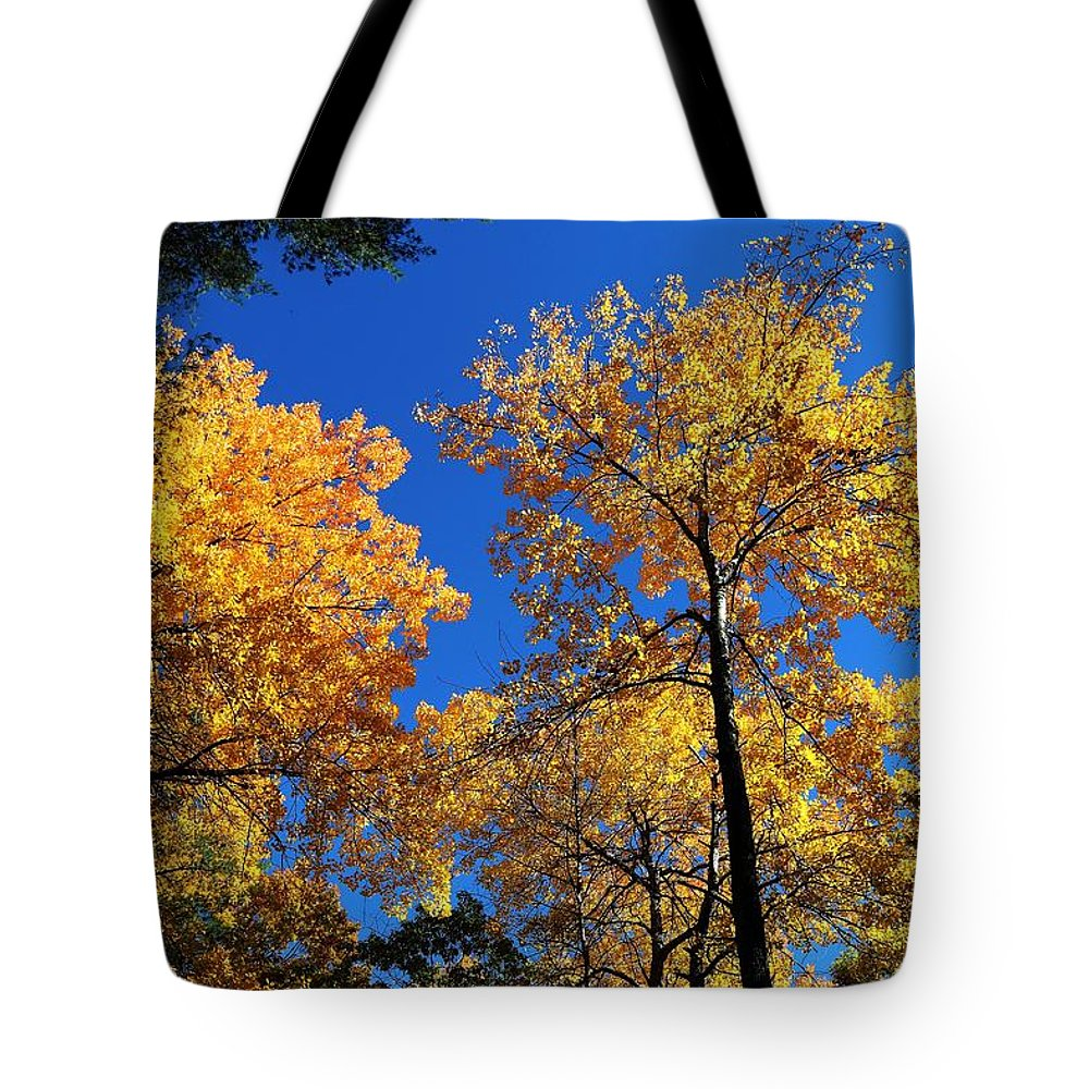 Maine Tote Bag featuring the photograph Autumn Yellow Foliage On Tall Trees Against A Blue Sky In Palermo by David Rafuse Captured Images of Maine