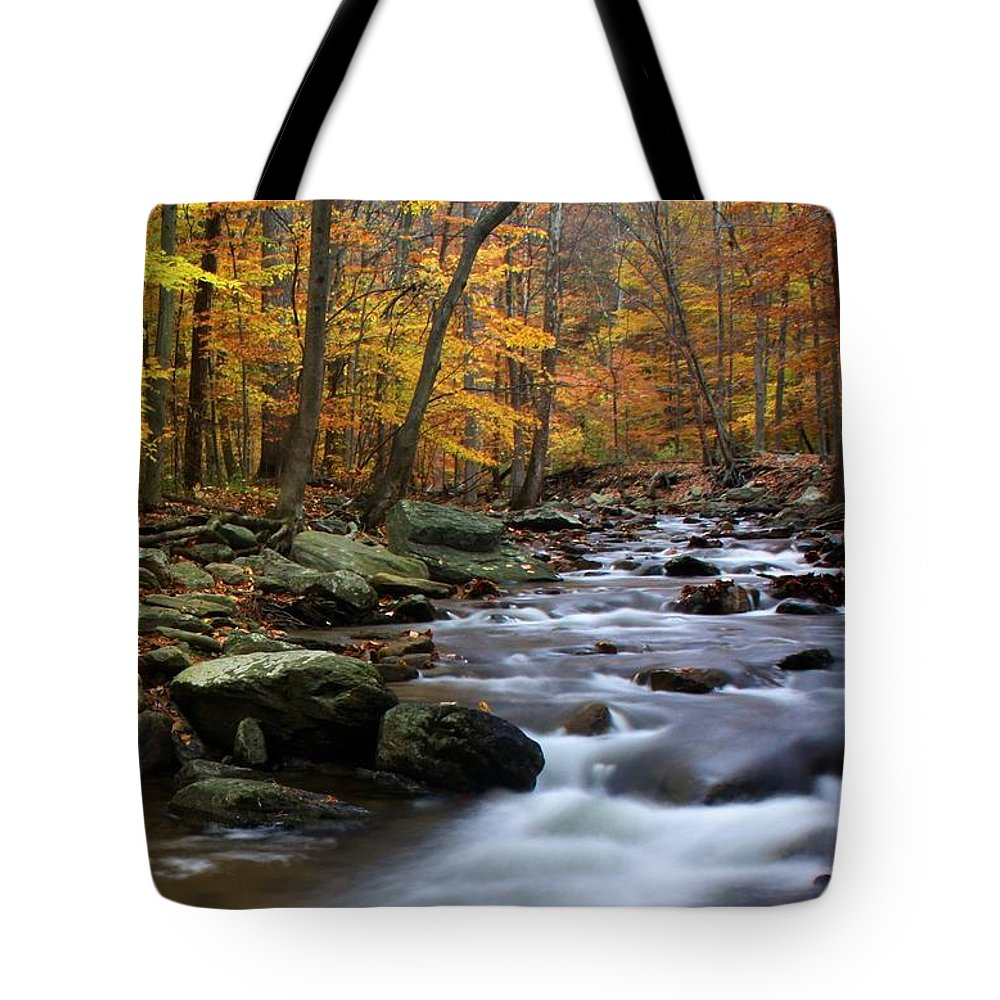 Autumn Tote Bag featuring the photograph Autumnal Face by Mitch Cat