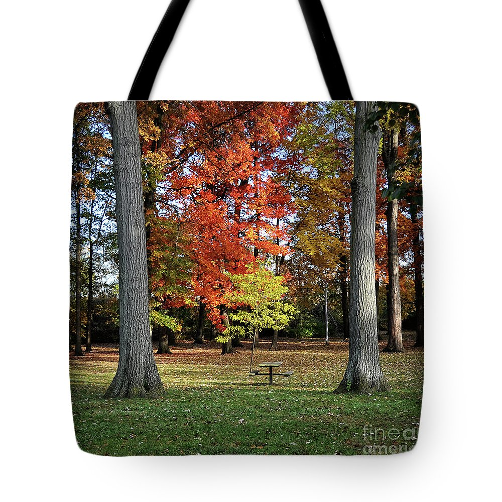 Chris Fleming Tote Bag featuring the photograph Autumnal Framework by Chris Fleming
