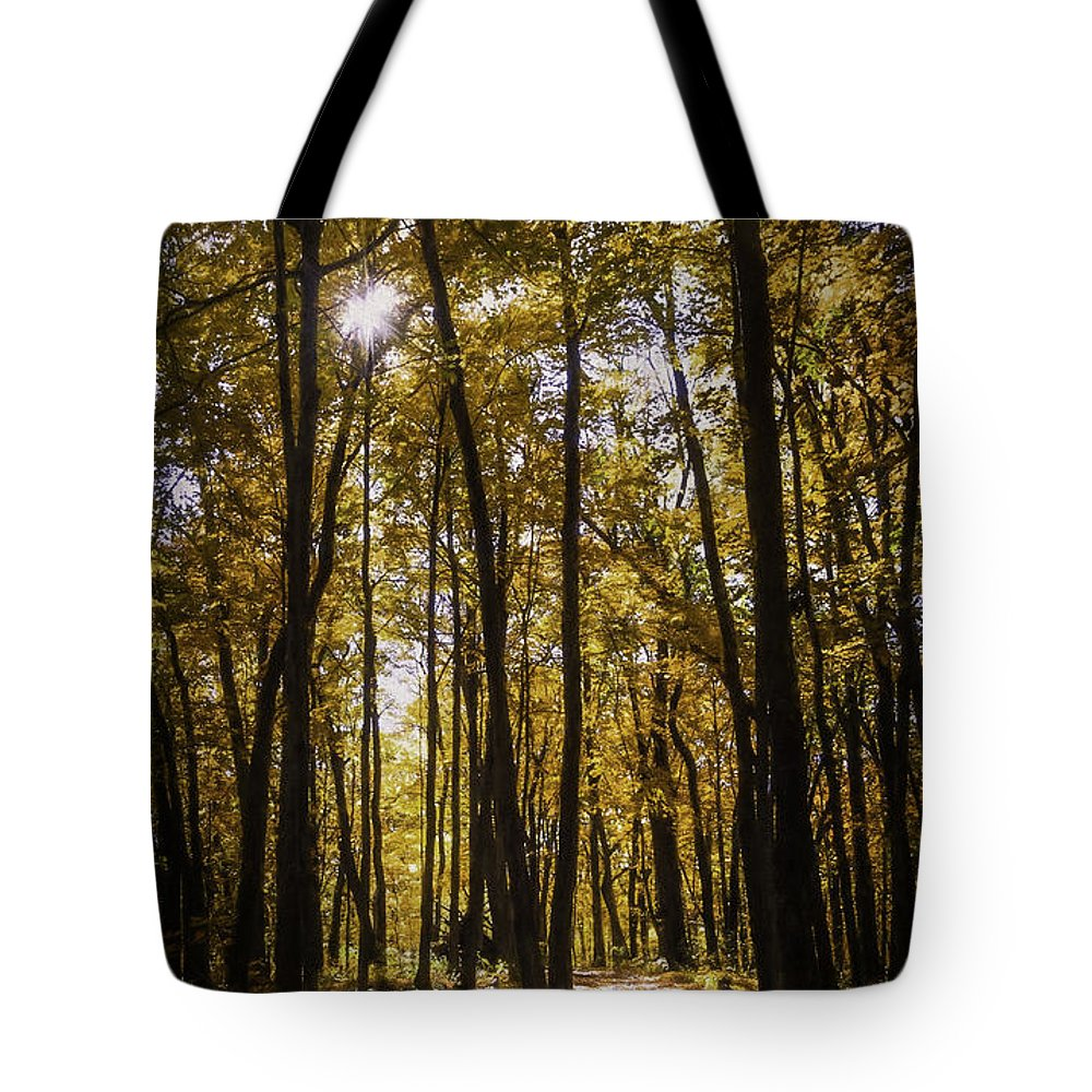Autumn Tote Bag featuring the photograph Autumns Fire by Scott Norris
