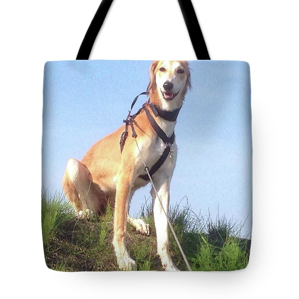 Salukilove Tote Bag featuring the photograph Ava-grace, Princess Of Arabia  #saluki by John Edwards