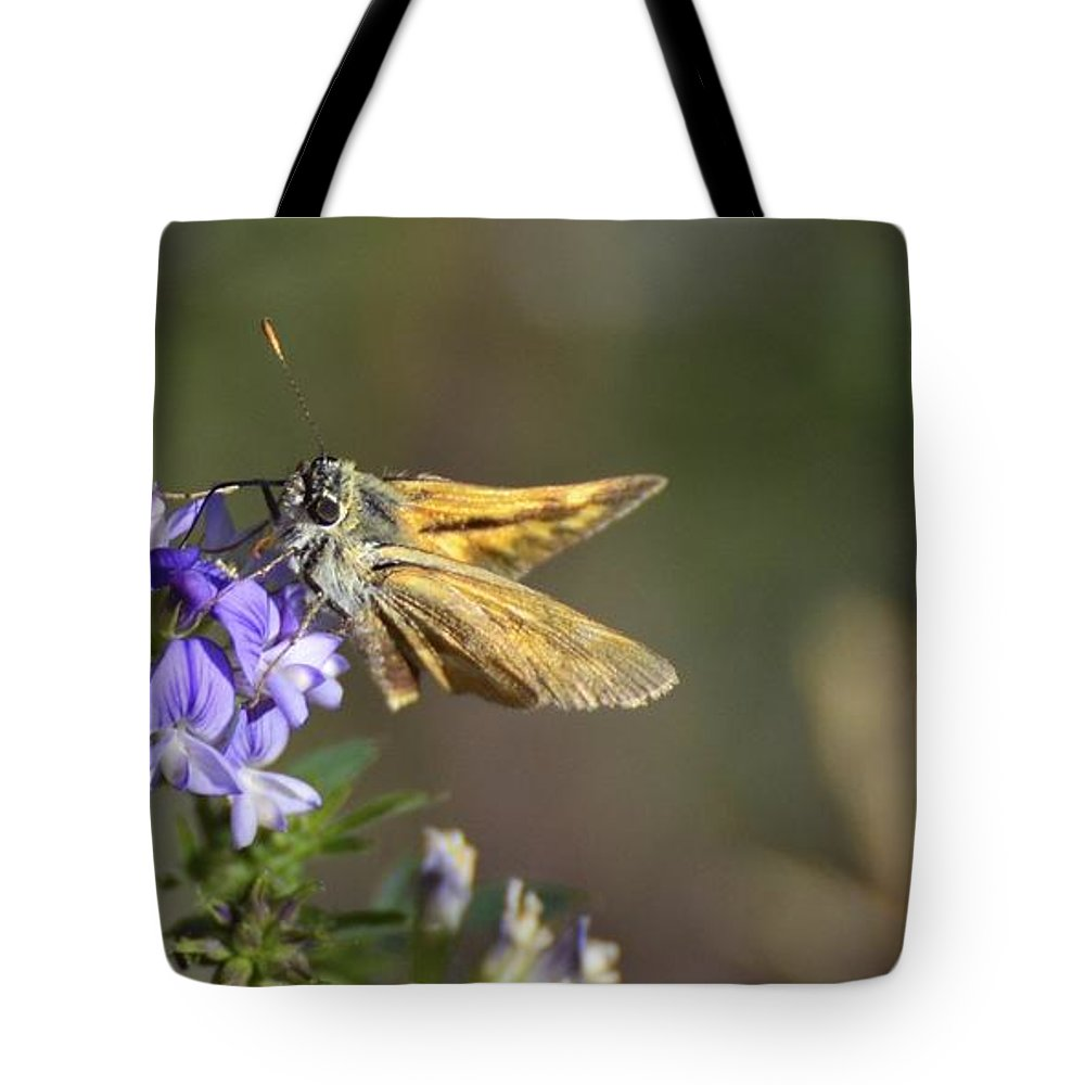 Moth Tote Bag featuring the photograph Aye Aye Skipper by Omer Vautour