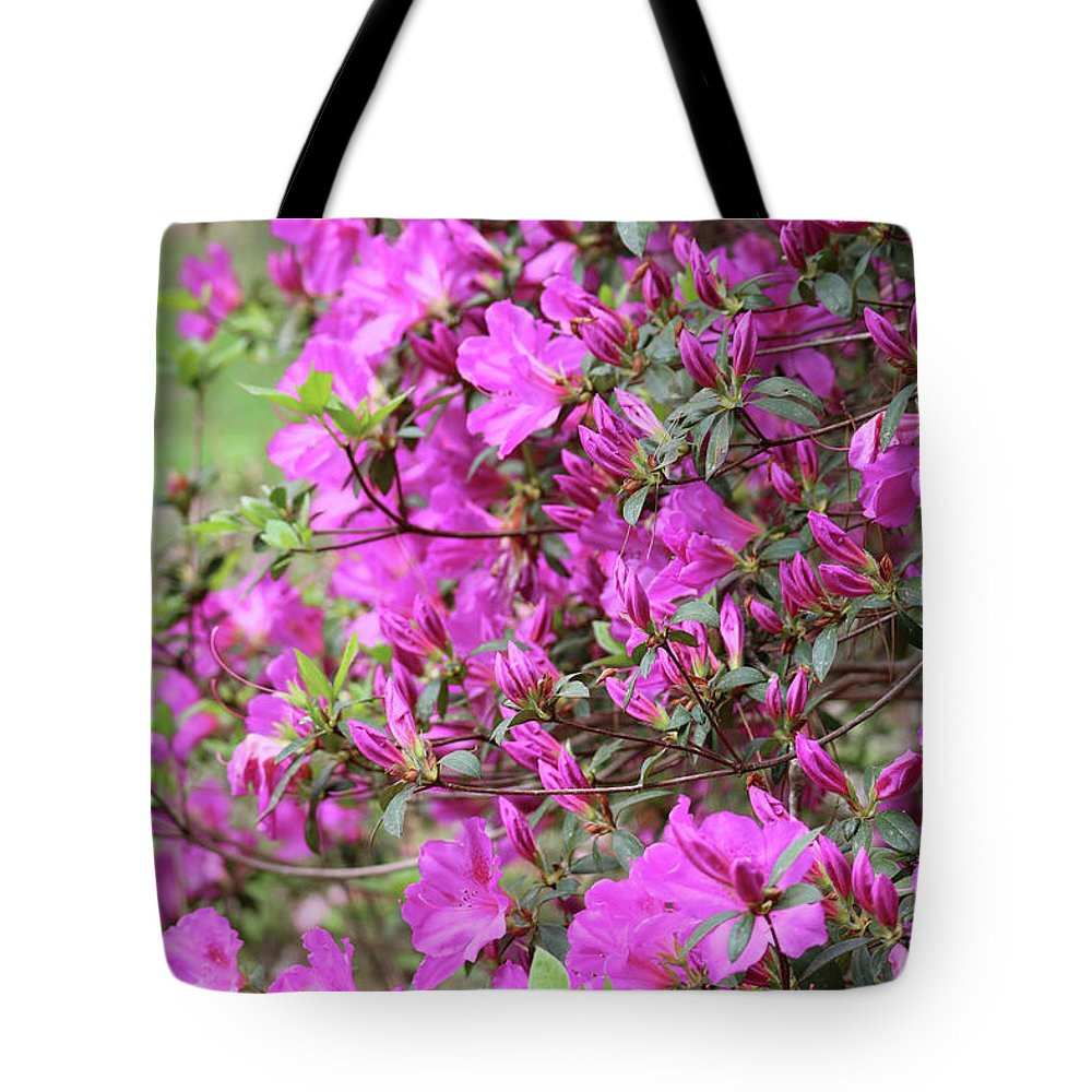 Pink Flower Tote Bag featuring the photograph Azalea World by Carol Groenen