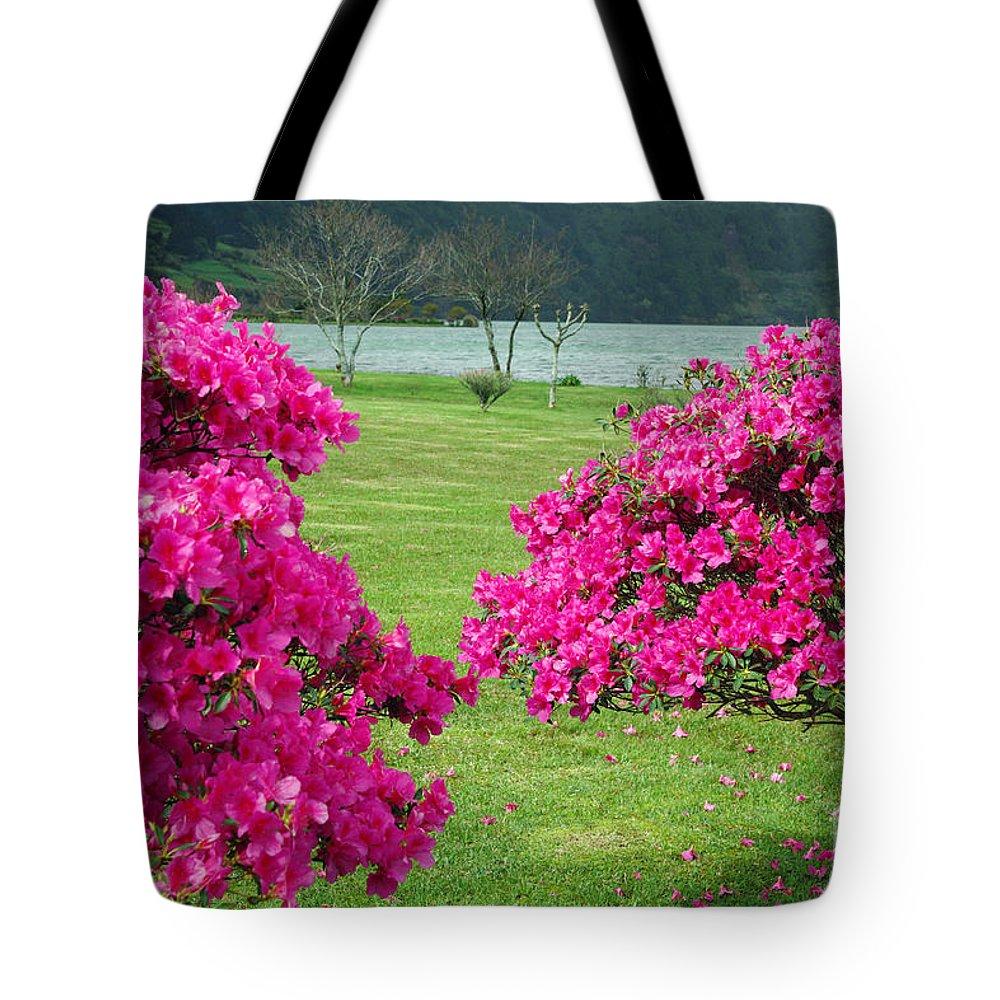 Azaleas Tote Bag featuring the photograph Azaleas At The Azores by Gaspar Avila