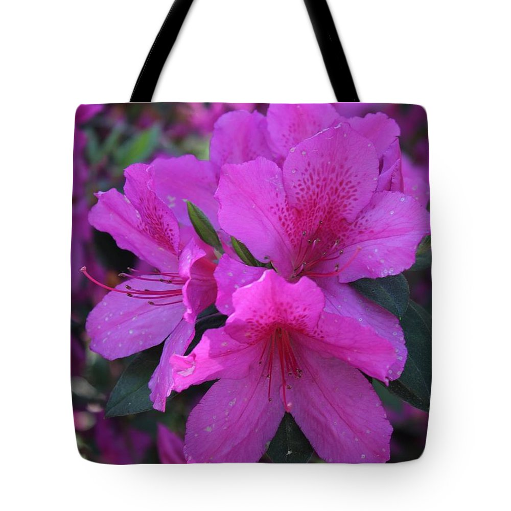 Savannah Tote Bag featuring the photograph Azaleas In Springtime by Arlene Showalter