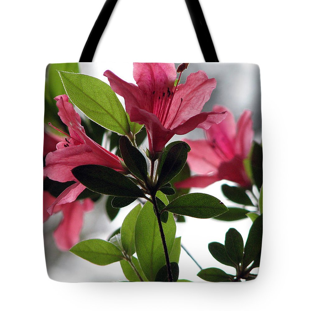Azalea Tote Bag featuring the photograph Azaleas Iv by Stacey May