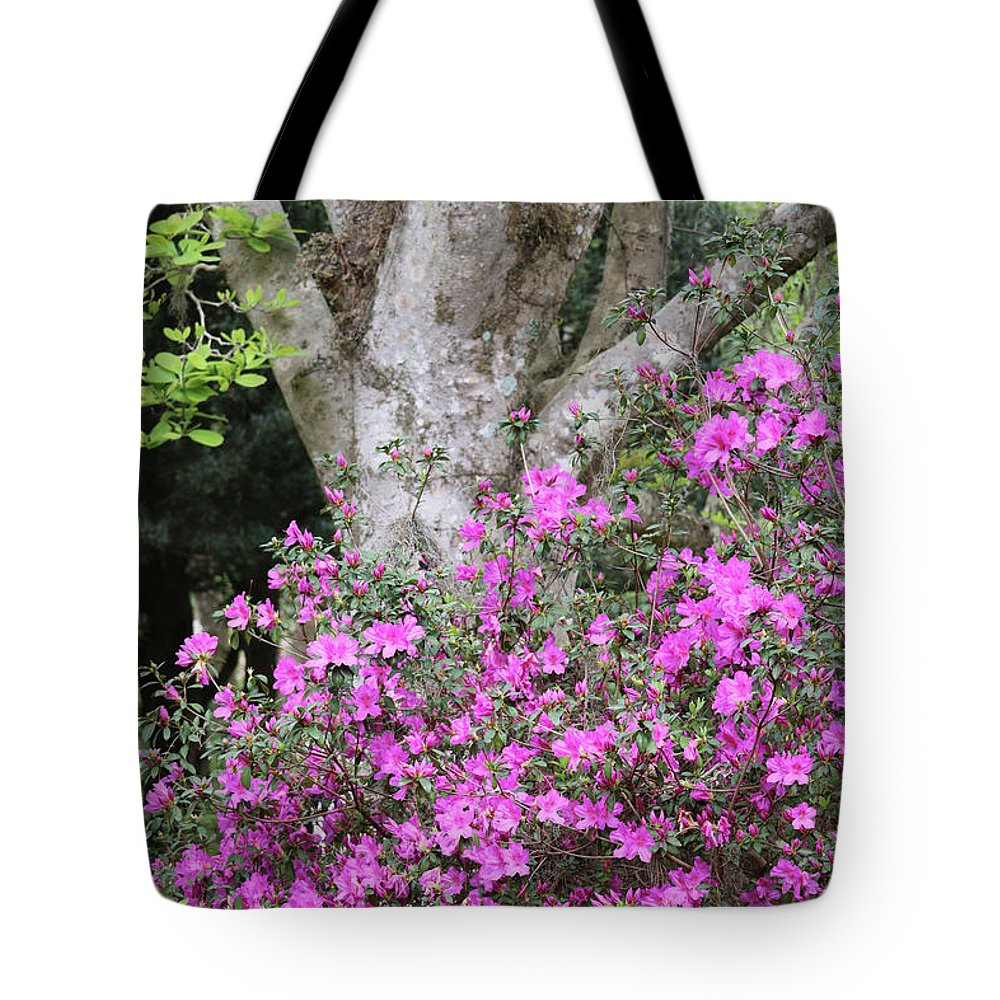 Azalea Tote Bag featuring the photograph Azaleas With Tree by Carol Groenen