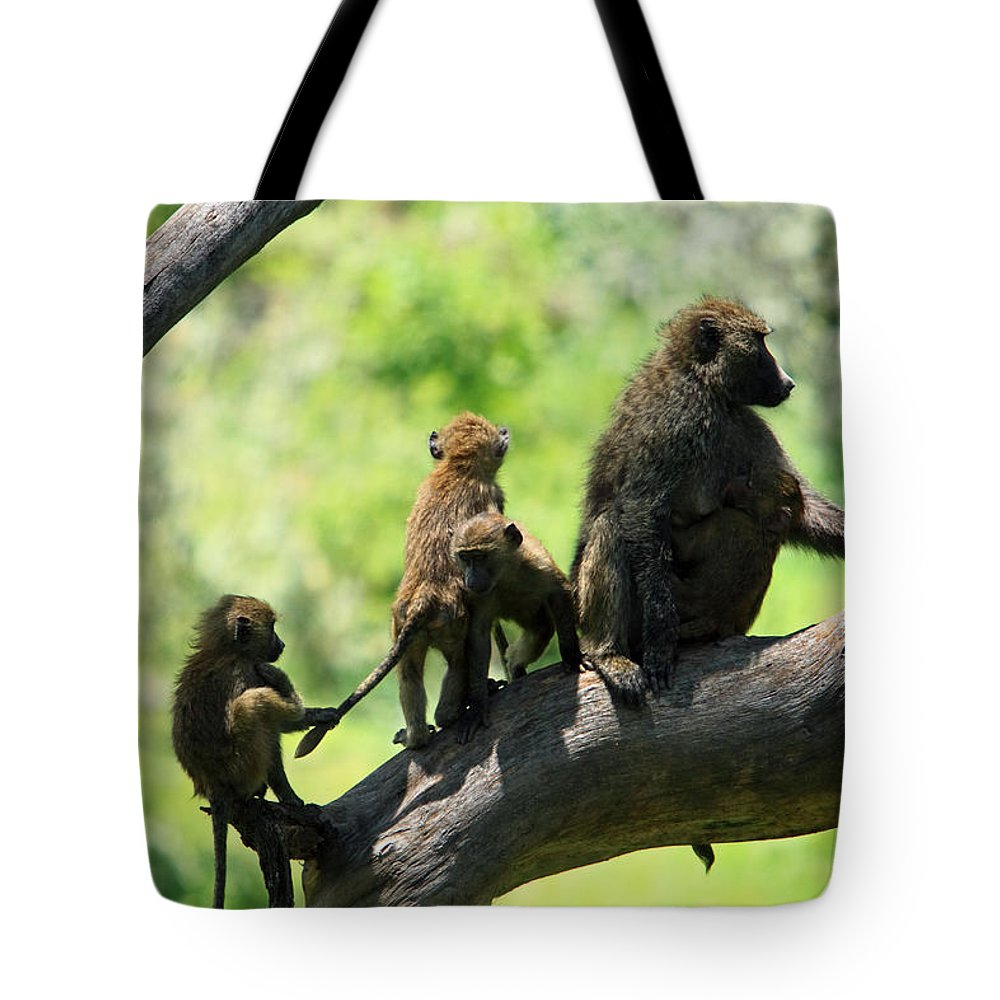 Baboon Tote Bag featuring the photograph Baboon Family by Aidan Moran
