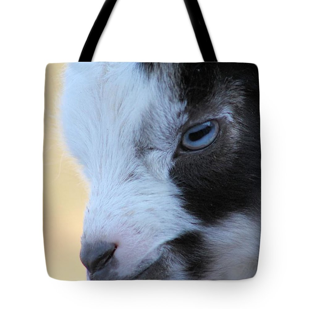 Farm Animals Tote Bag featuring the photograph Baby Goat by G Berry