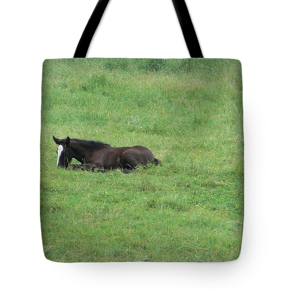Nancie's Photography Tote Bag featuring the photograph Baby Horse by Nancie DeMellia