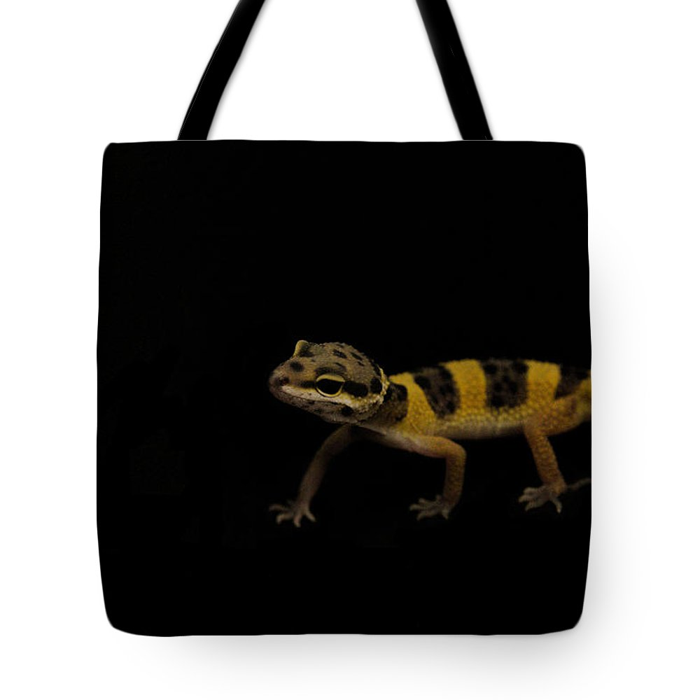 Leopard Tote Bag featuring the photograph Baby Leopard Gecko by Natalie Hood
