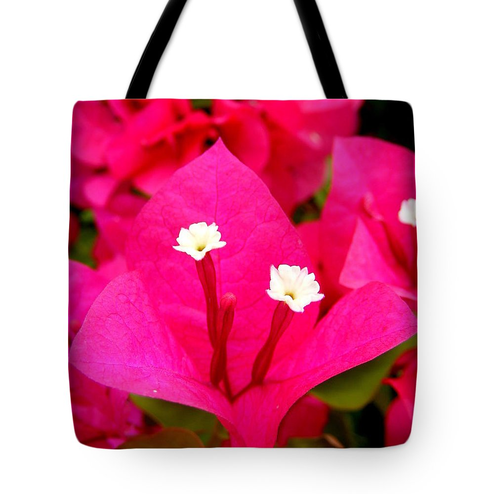 Baby Sisters Tote Bag featuring the photograph Baby Sisters by Ed Smith