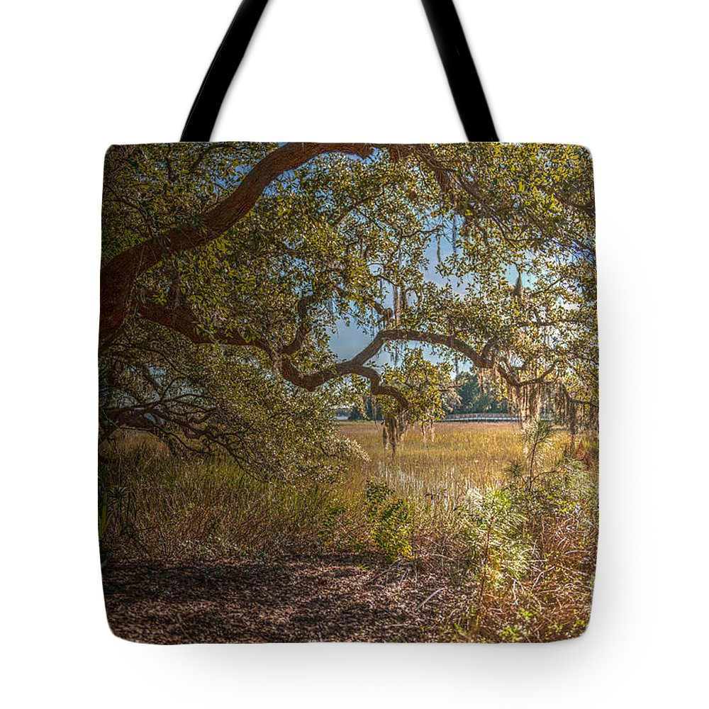 Daniel Island Tote Bag featuring the photograph Back In Time by Dale Powell