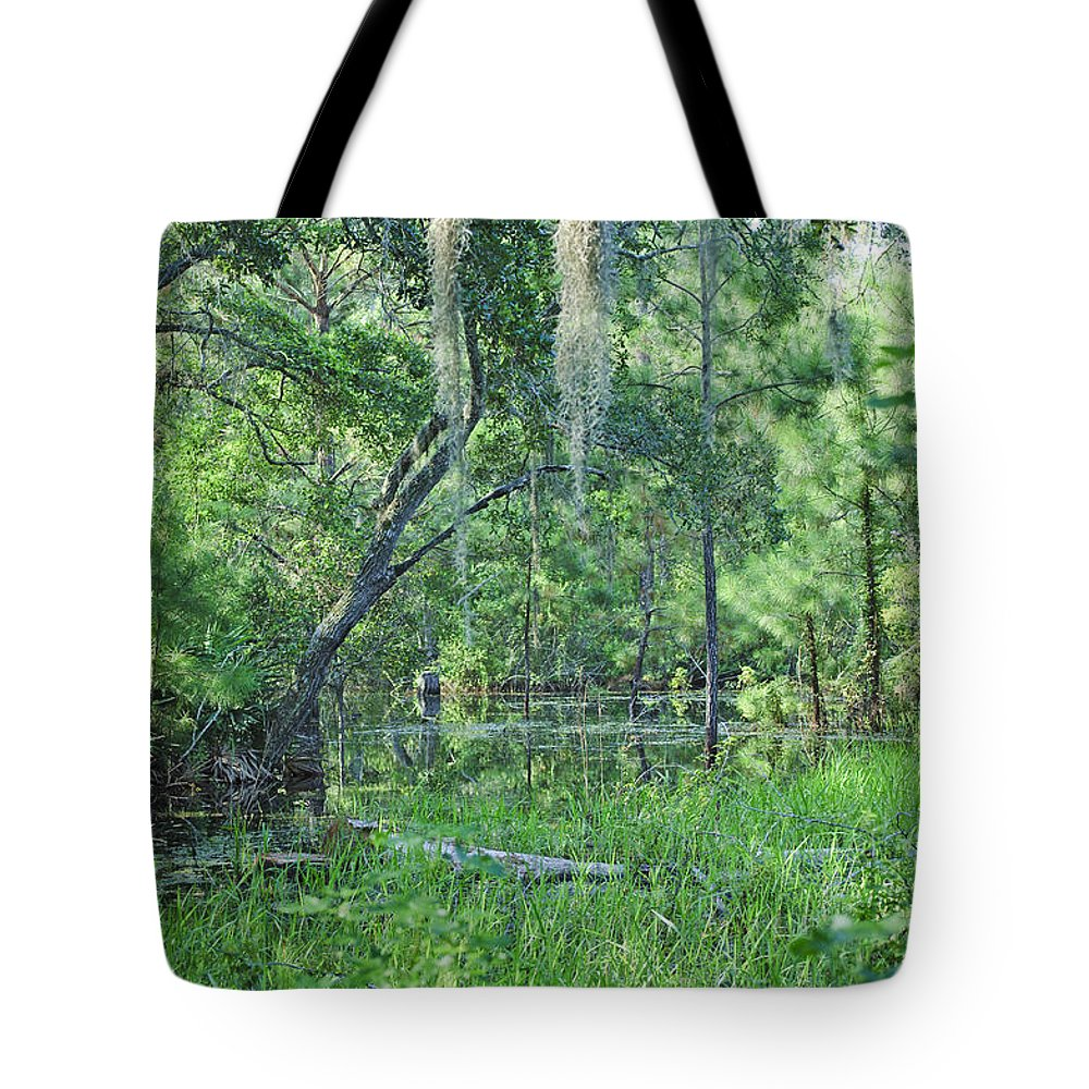 Swamp Tote Bag featuring the photograph Back In Time In Florida by Kenneth Albin