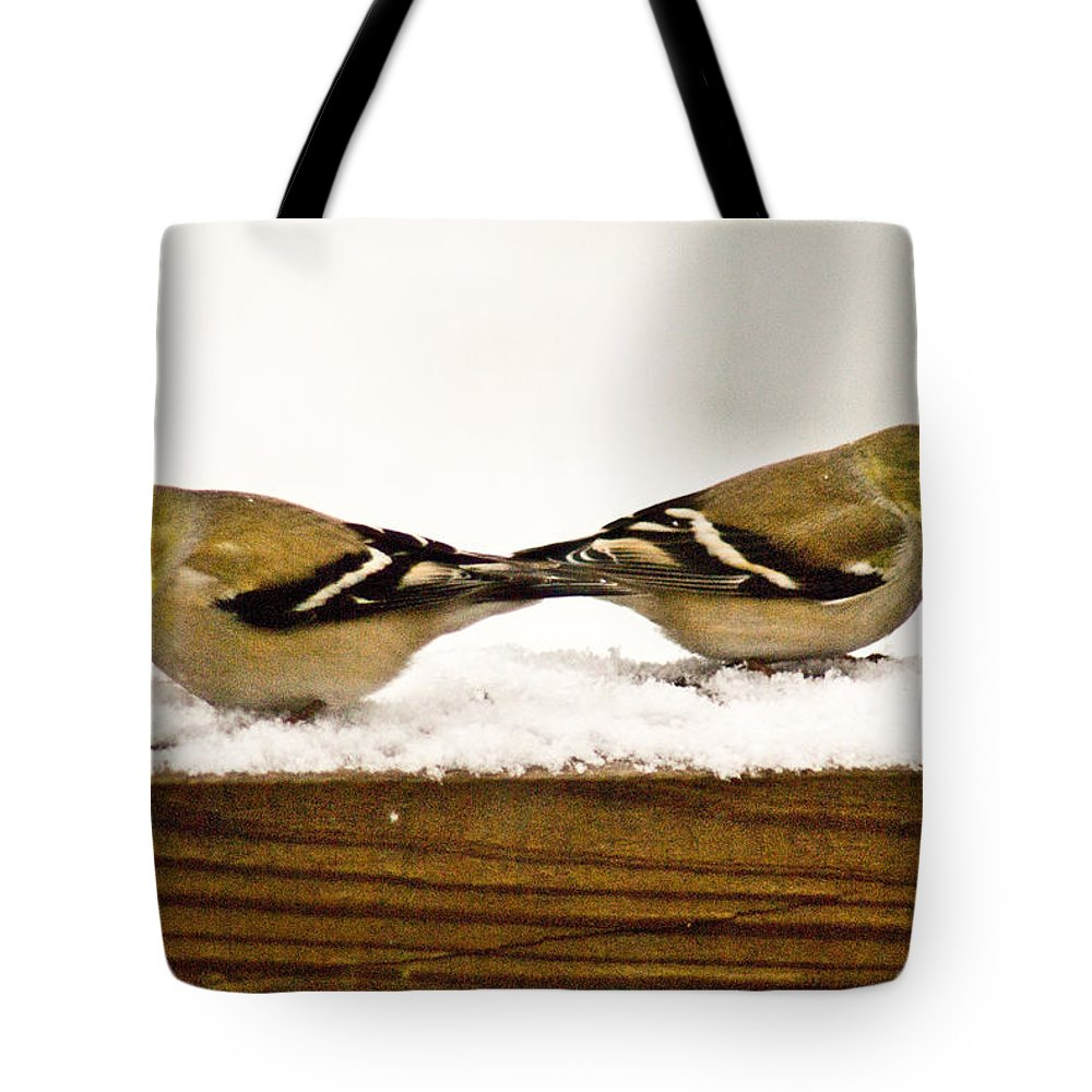 American Tote Bag featuring the photograph Back To Back American Gold Finches by Douglas Barnett