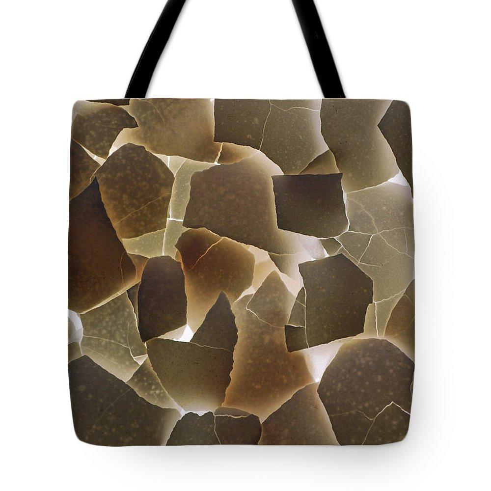 Eggshells Break Delicate Fragile Crack Cracks Tote Bag featuring the photograph Backlit Broken Egg Shells by Reimar Gaertner