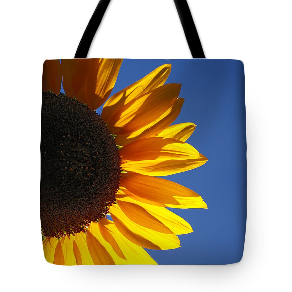Back Light Tote Bag featuring the photograph Backlit Sunflower by Gaspar Avila