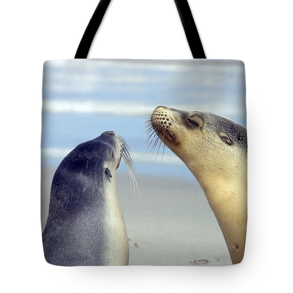 Sea Lion Tote Bag featuring the photograph Backtalk by Mike Dawson