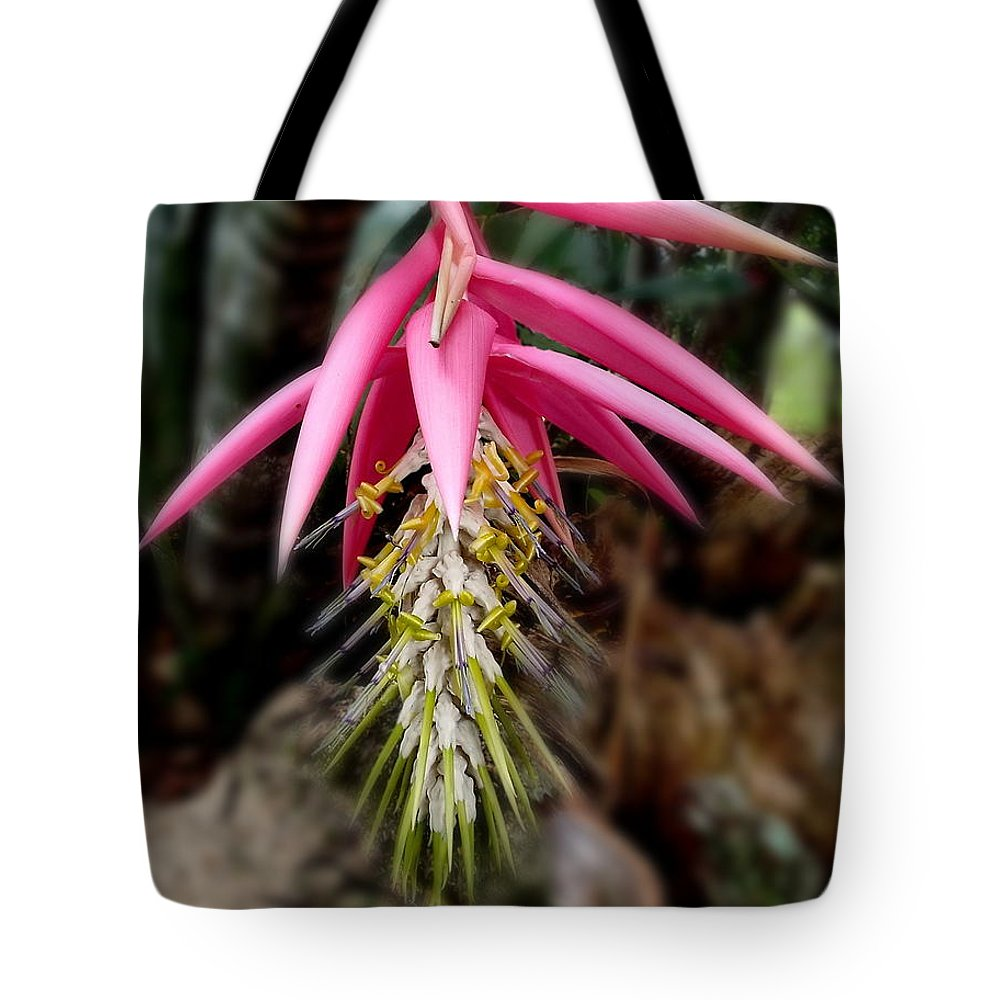 Flowers Tote Bag featuring the photograph Backyard Beauty by Gordon Castle