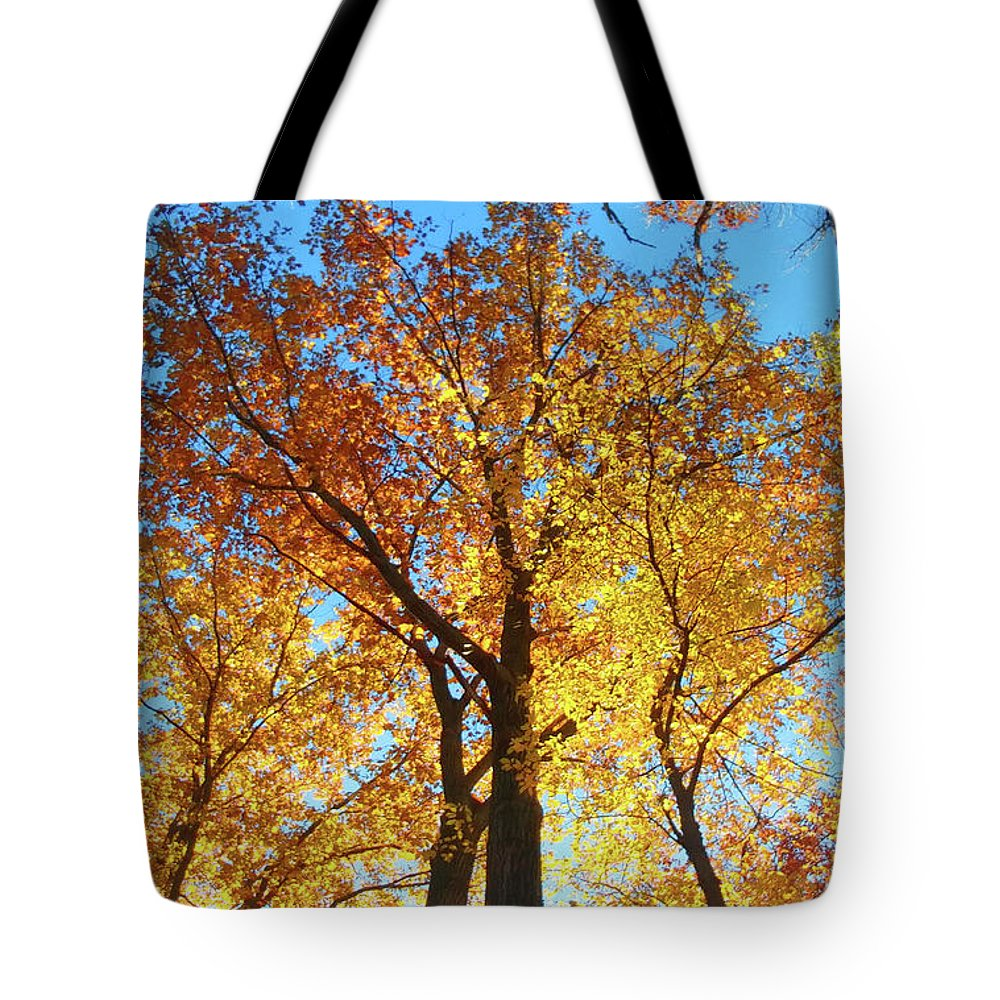 Nature Tote Bag featuring the photograph Backyard Beauty by Roger Bester