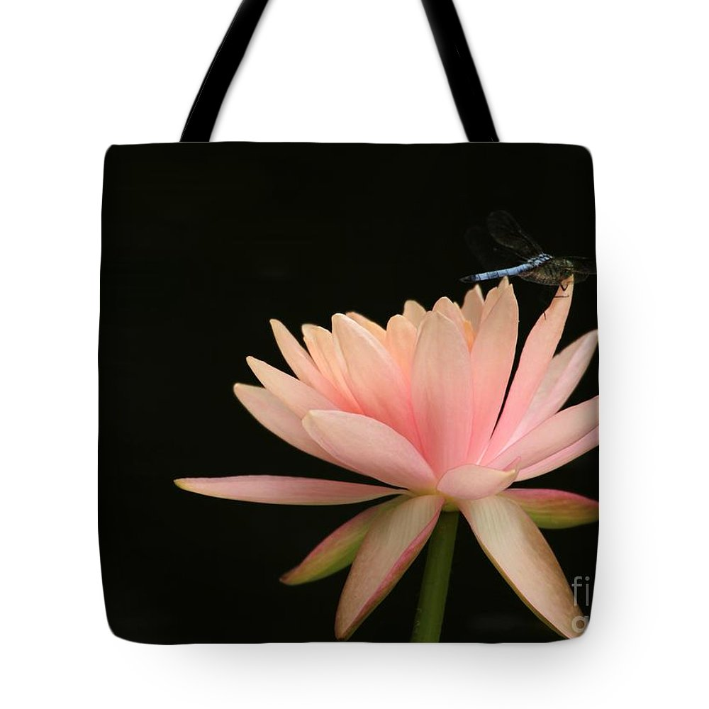 Water Lily Tote Bag featuring the photograph Balance by Sabrina L Ryan