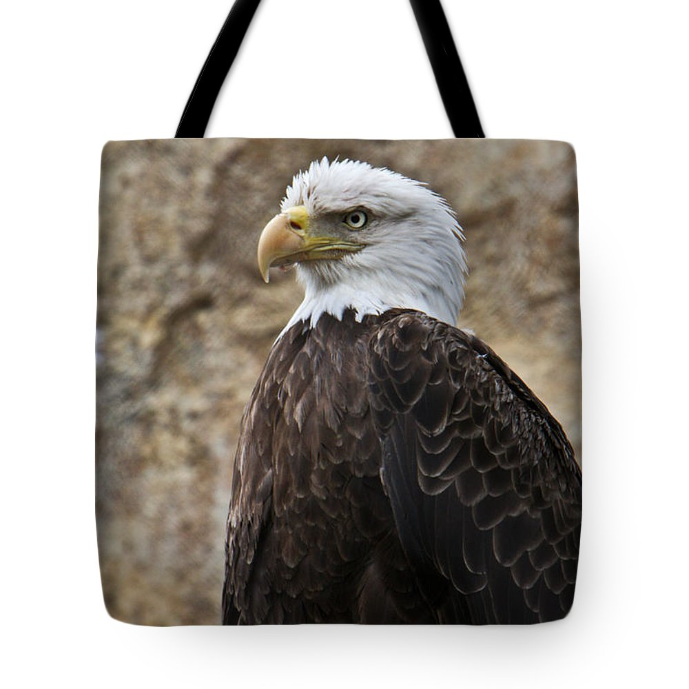 Bald Tote Bag featuring the photograph Bald Eagle - Portrait 2 by Douglas Barnett