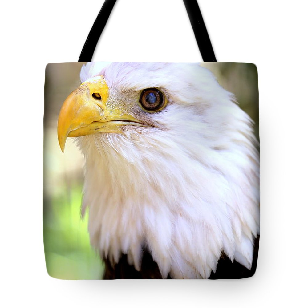 Bald Eagle Tote Bag featuring the photograph Bald Eagle 1 by Imagery-at- Work