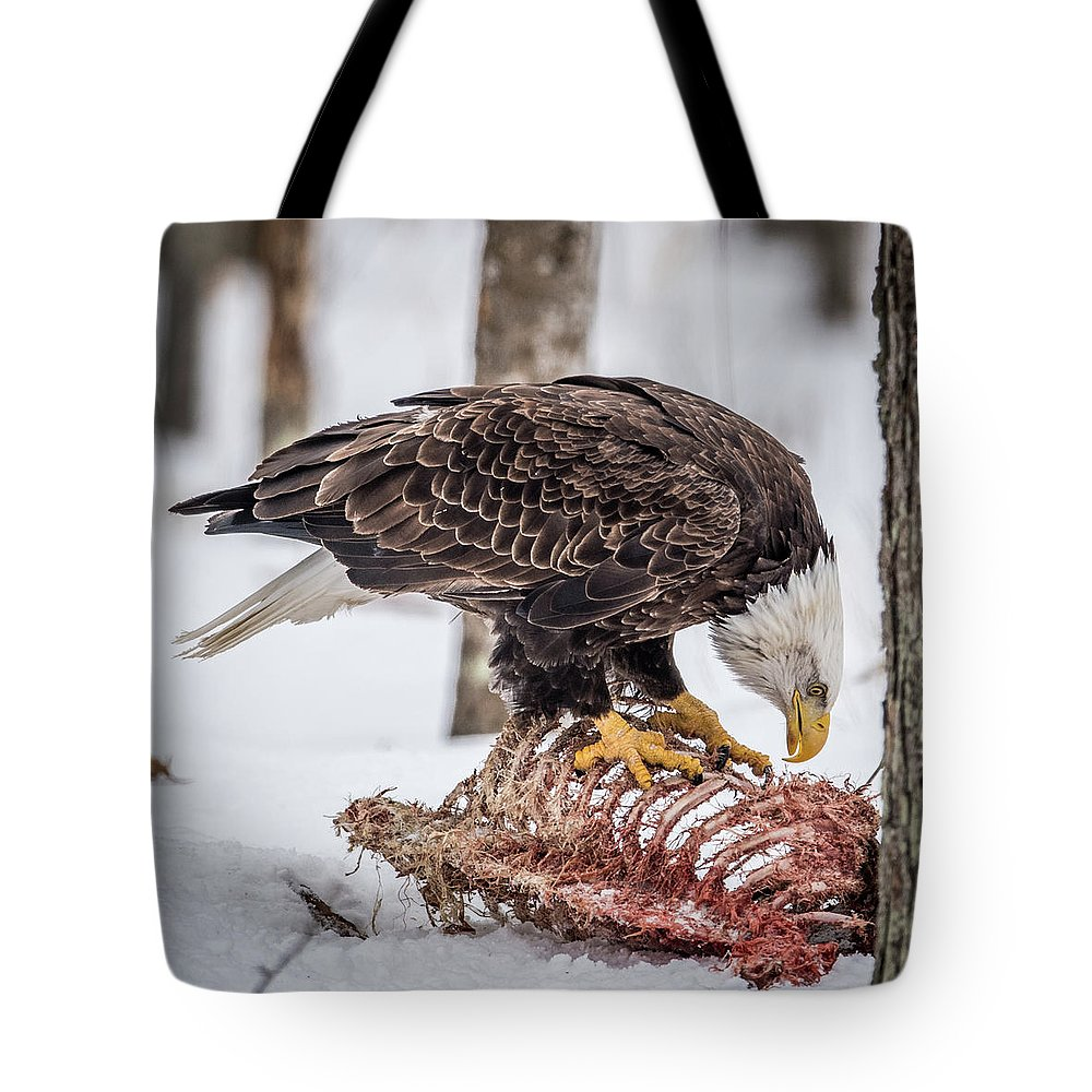 Bald Eagle Tote Bag featuring the photograph Bald Eagle At The Buffet by Paul Freidlund