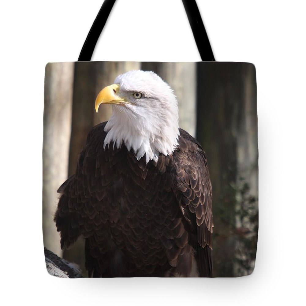 Eagle Tote Bag featuring the photograph Bald Eagle by Christiane Schulze Art And Photography