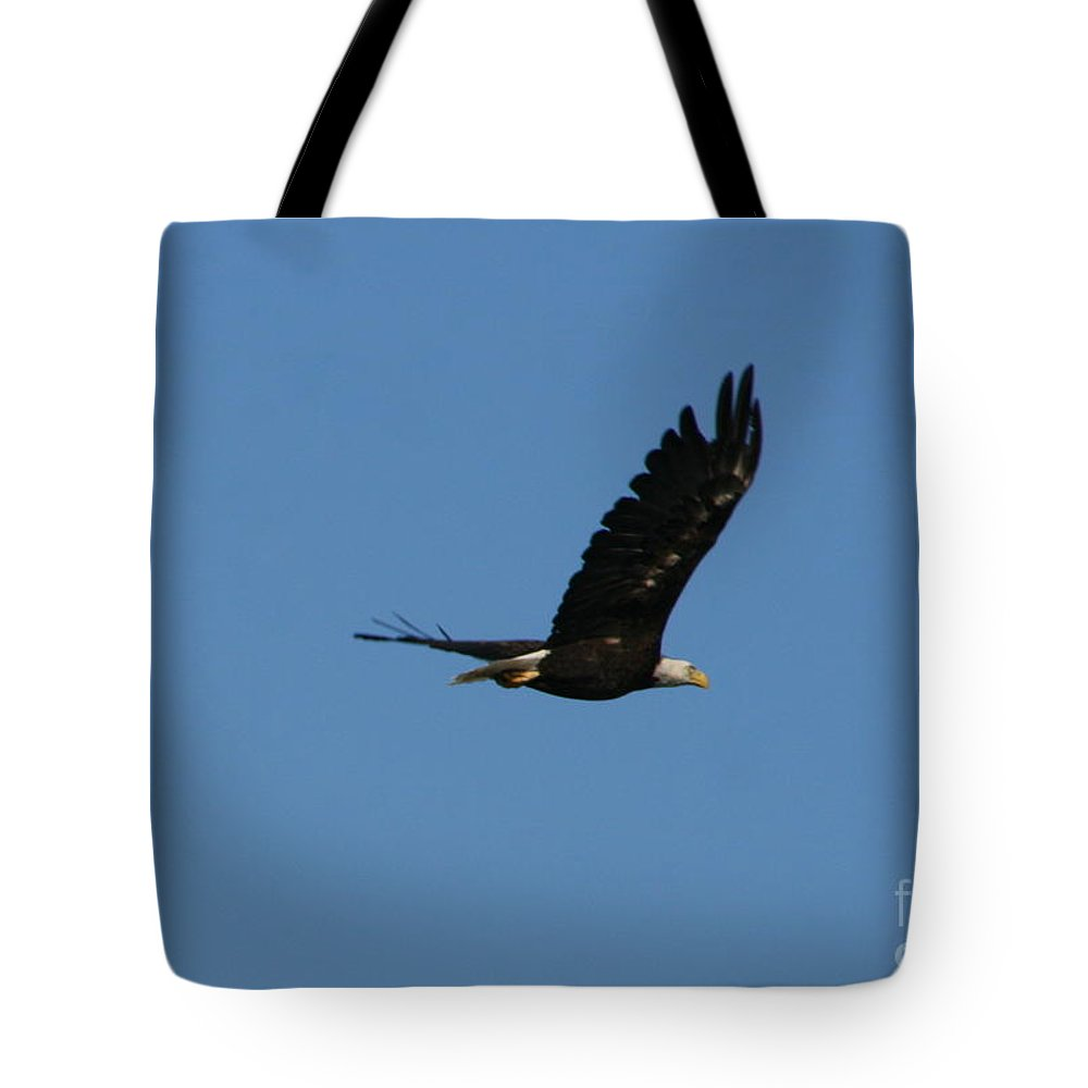 Bald Eagle Tote Bag featuring the photograph Bald Eagle Flight by Neal Eslinger