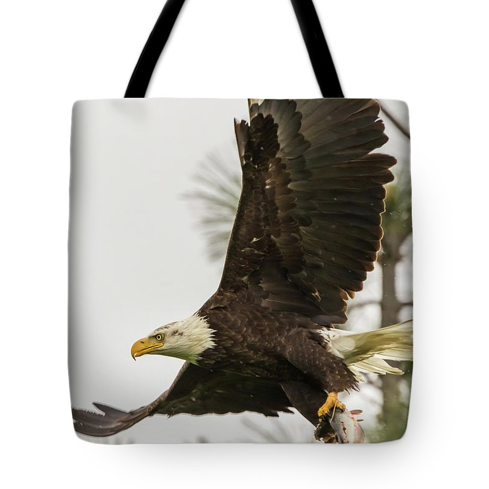 California Tote Bag featuring the photograph Bald Eagle Flying With Fish by Marc Crumpler
