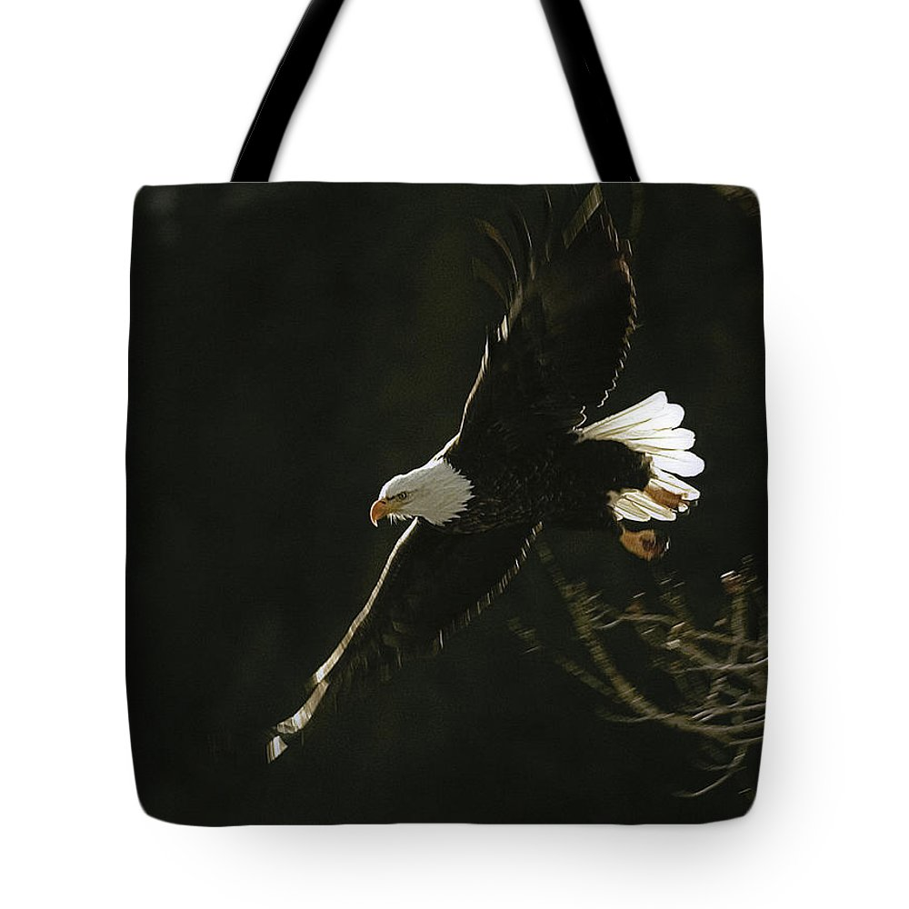 Haliaeetus Leucocephalus Tote Bag featuring the photograph Bald Eagle-signed by J L Woody Wooden