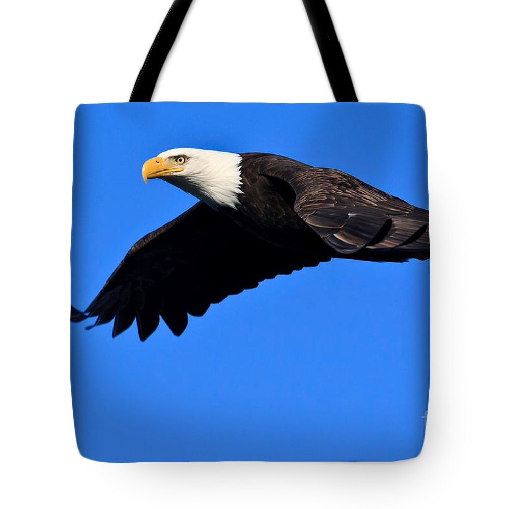 Washington Tote Bag featuring the photograph Bald Eagle by Tim Hauf