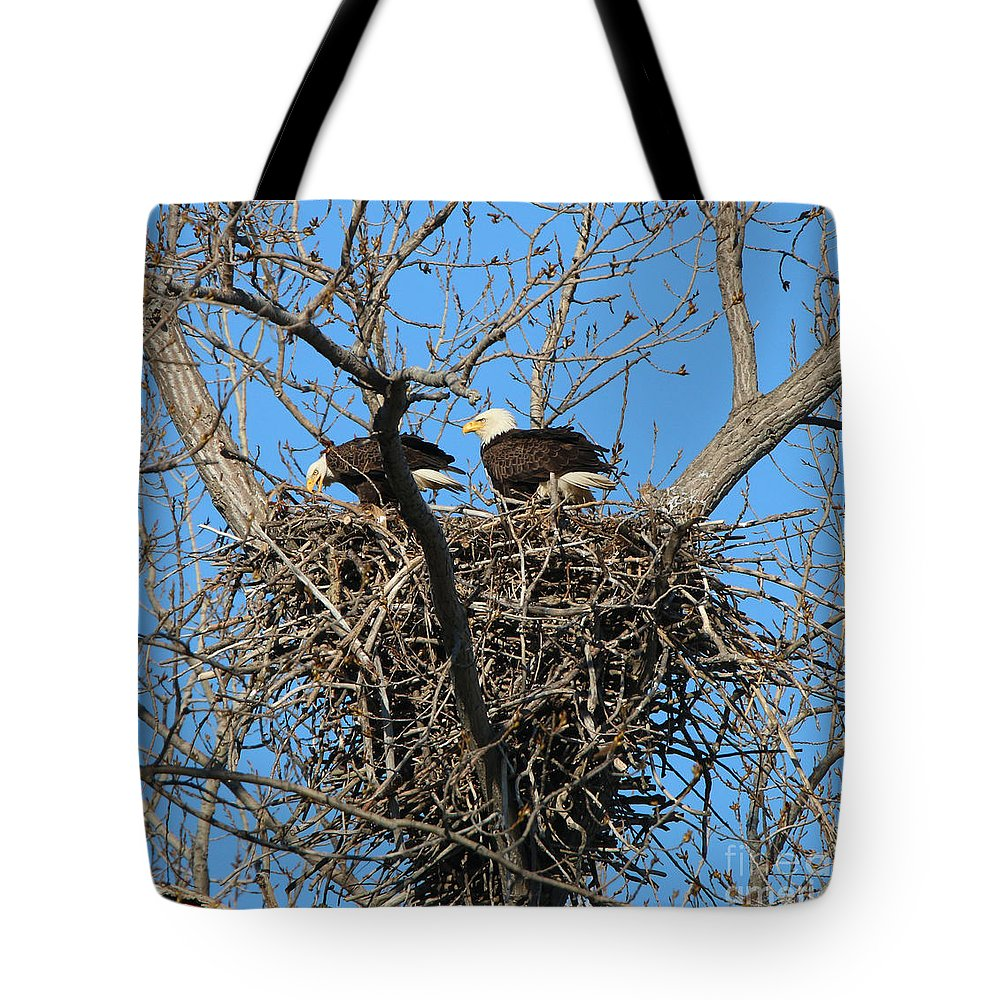 Bald Eagles Tote Bag featuring the photograph Bald Eagles Working On The Nest  3682 by Jack Schultz