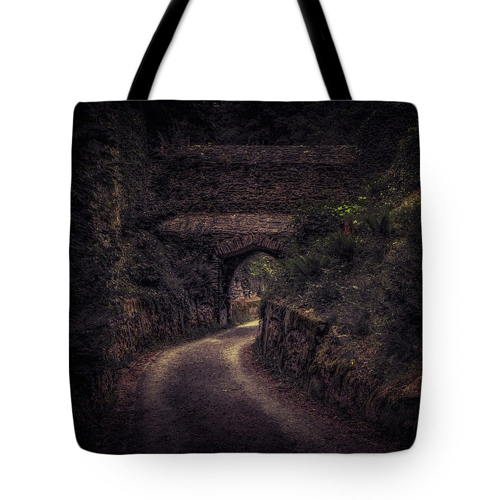 Balduinstein Tote Bag featuring the photograph Balduinstein Castle_gateway by Hans Zimmer
