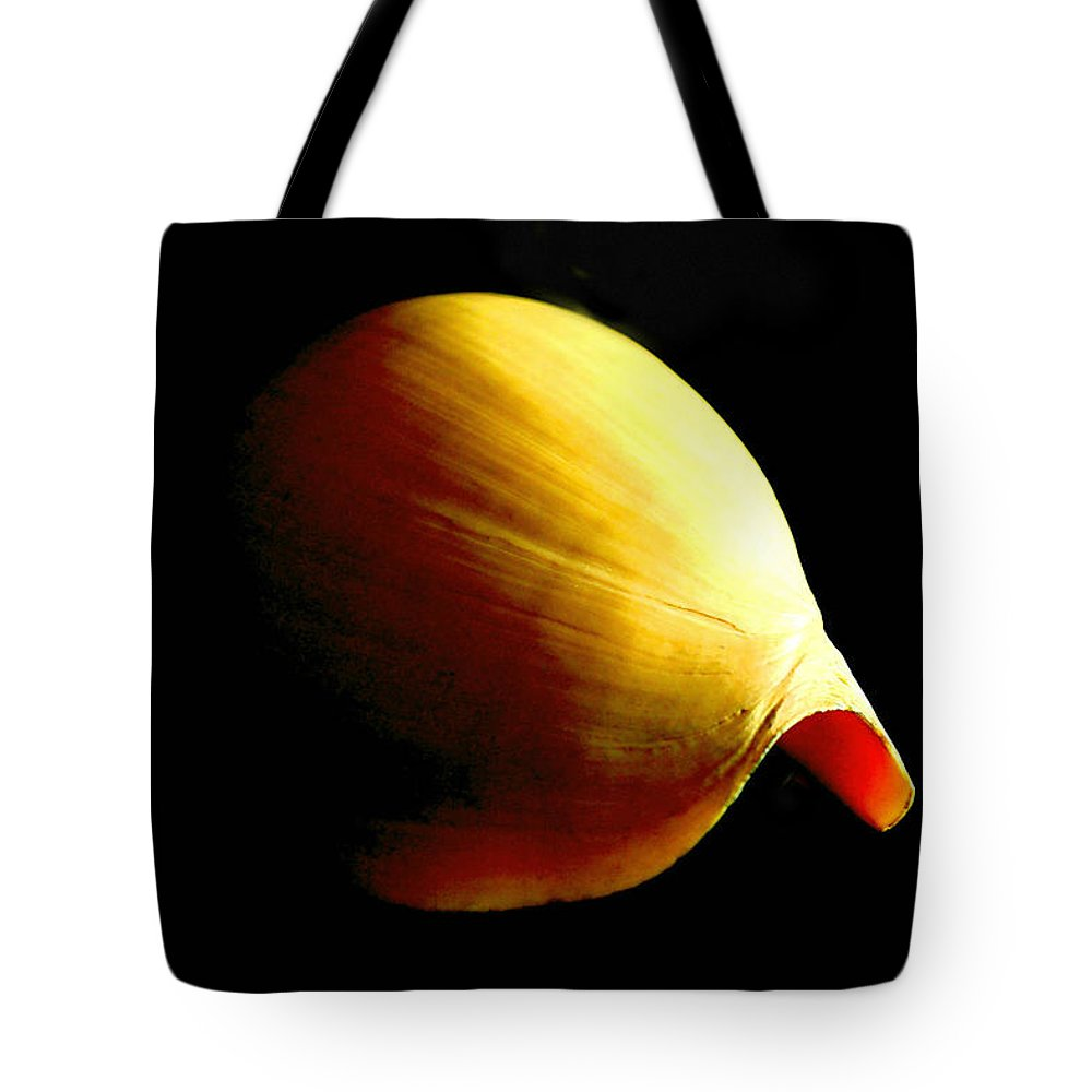 Seashell Tote Bag featuring the photograph Baler Shell by MuzioArt Photography