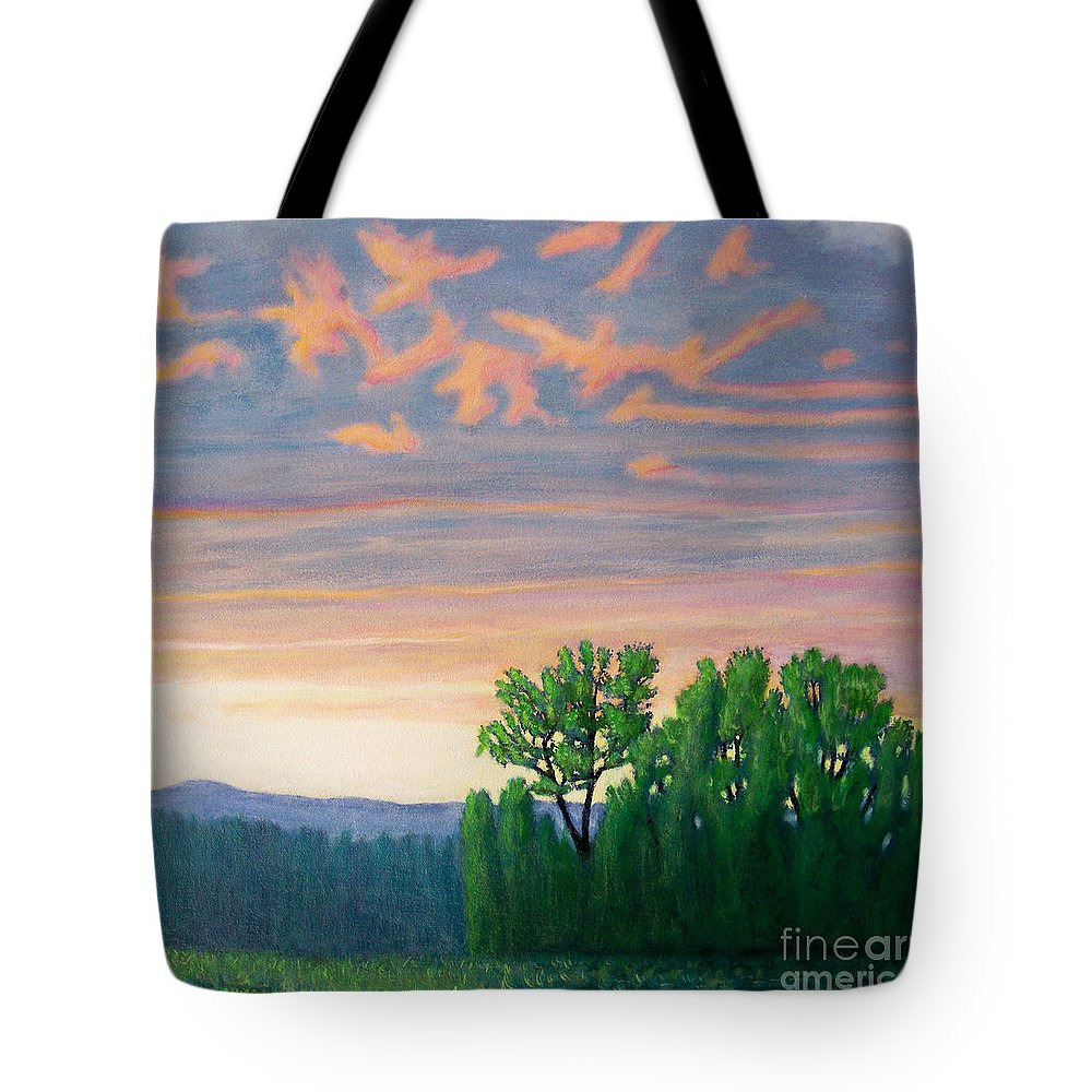 Landscape Tote Bag featuring the painting Balsa Road by Brian Commerford