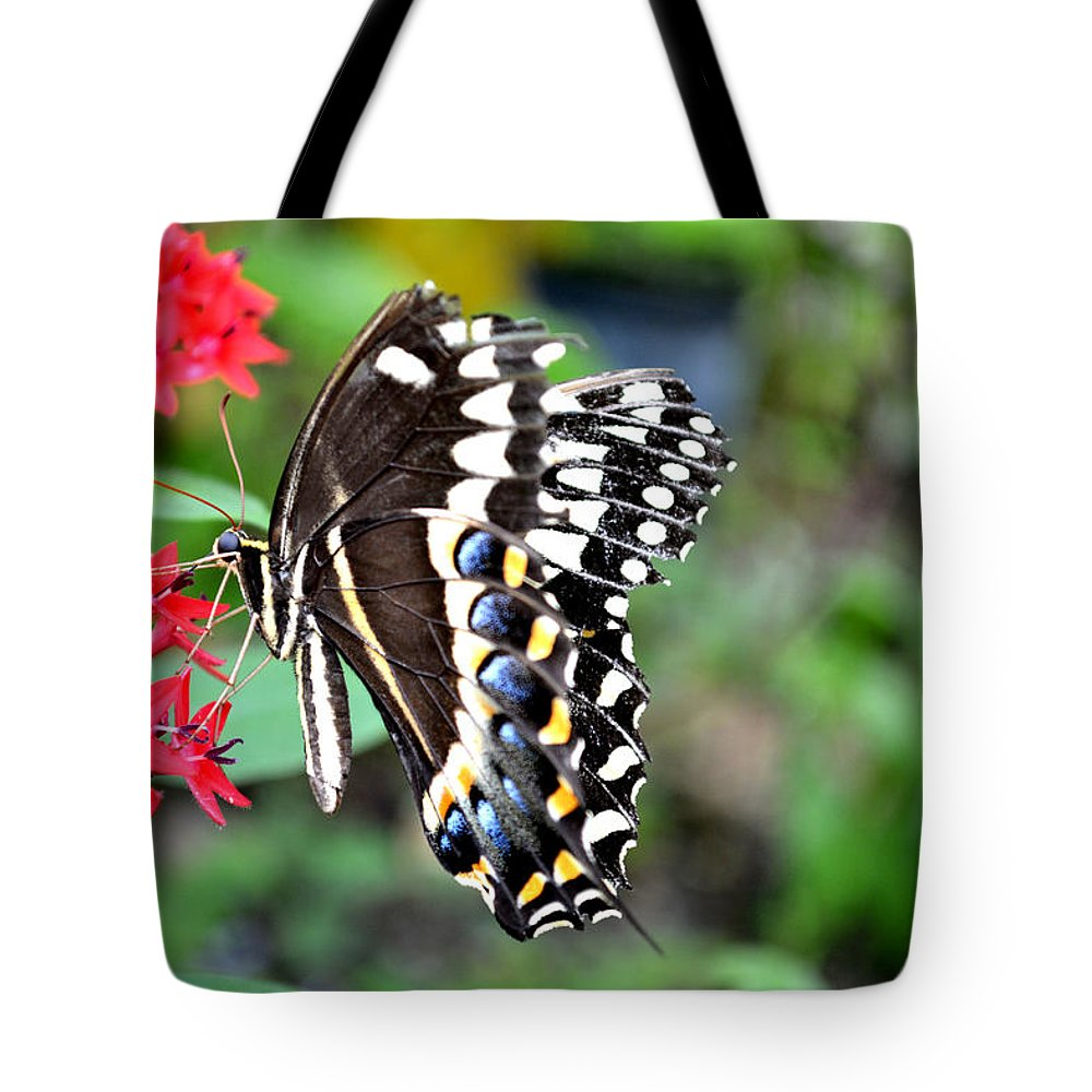 Butterfly Tote Bag featuring the photograph Baltimore Checker Spot Butterfly by Reva Steenbergen