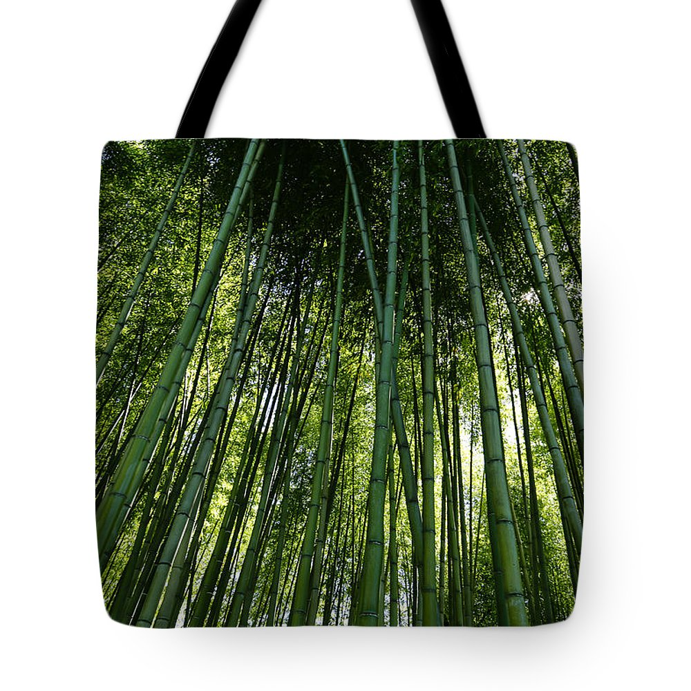 Bamboo Tote Bag featuring the photograph Bamboo 01 by Michael Parks