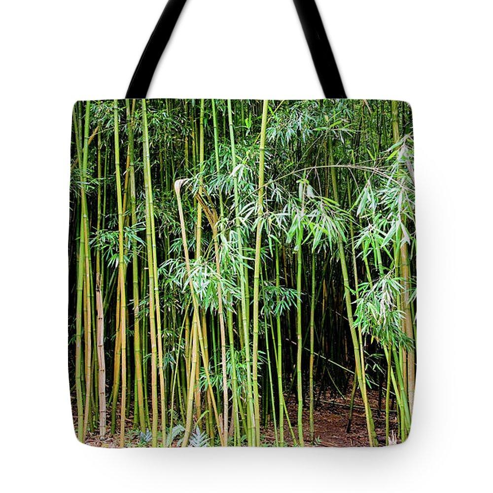 Bamboo Chimes Tote Bag featuring the photograph Bamboo Chimes, Waimoku Falls trail, Hana Maui Hawaii by Michael Bessler
