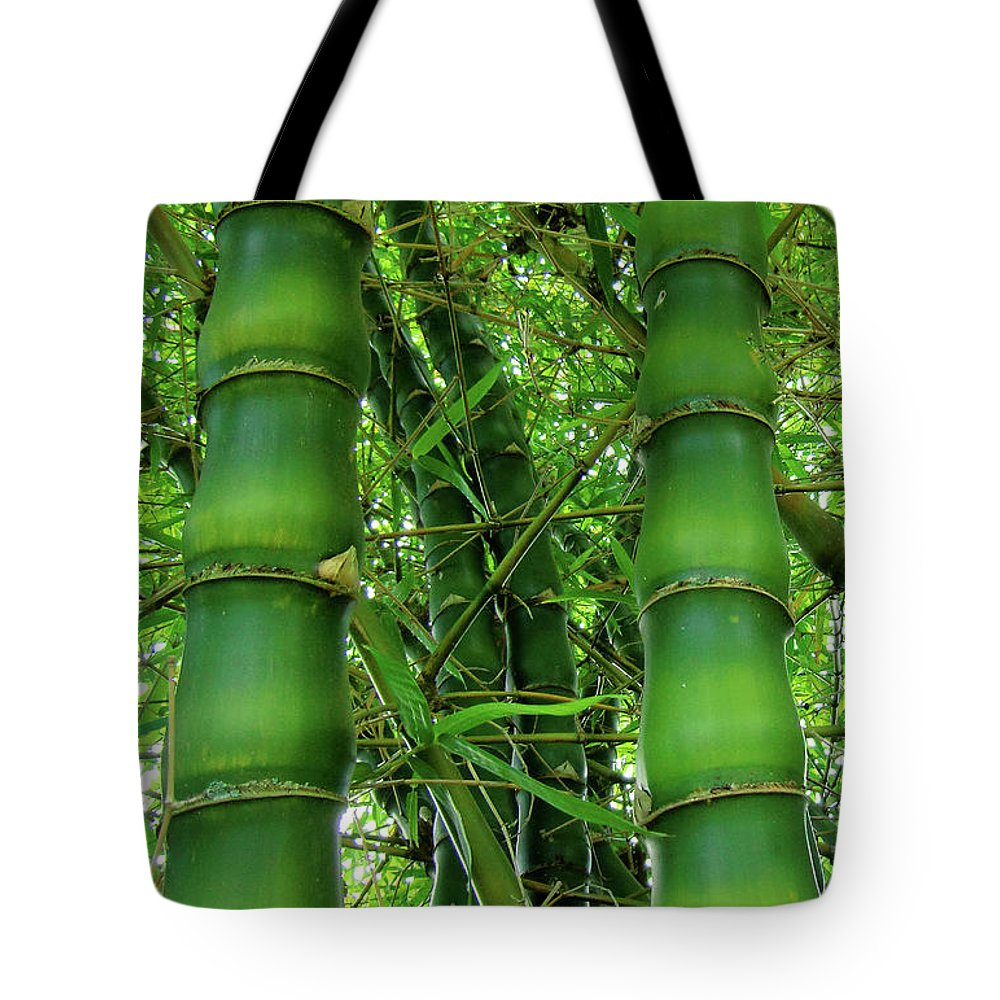 Bamboo Photography Prints Tote Bag featuring the photograph Bamboo by Loriannah Hespe
