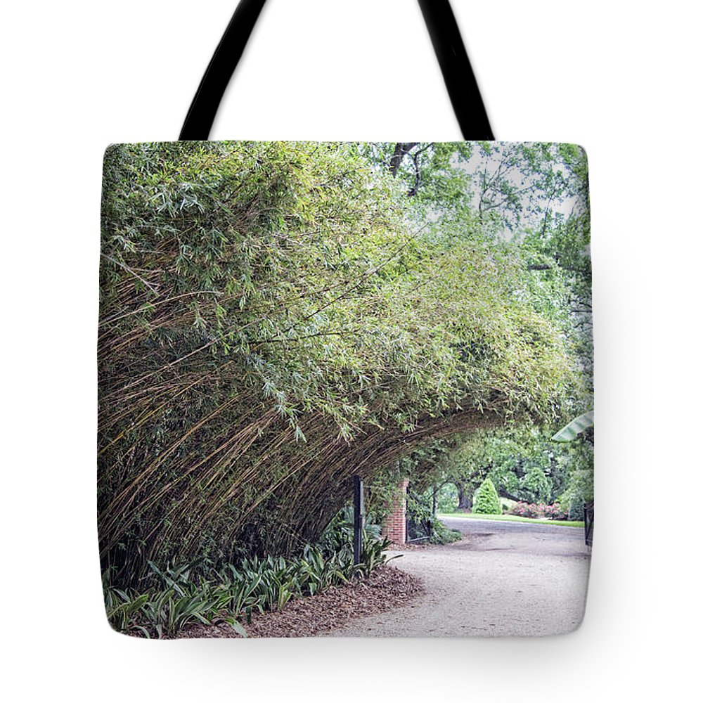 Landscape Tote Bag featuring the photograph Bamboo Overhang Path by Chuck Kuhn