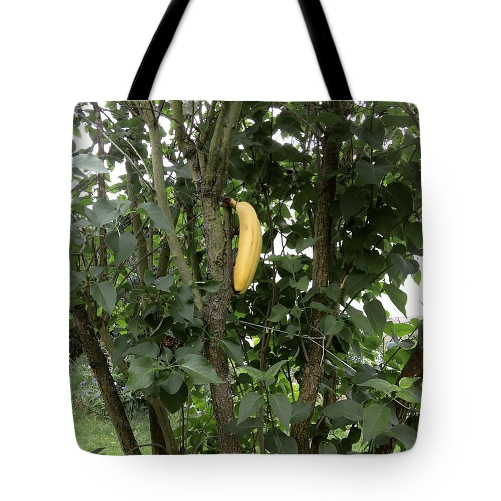 Banana Tote Bag featuring the photograph Banana tree by Gypsy Heart